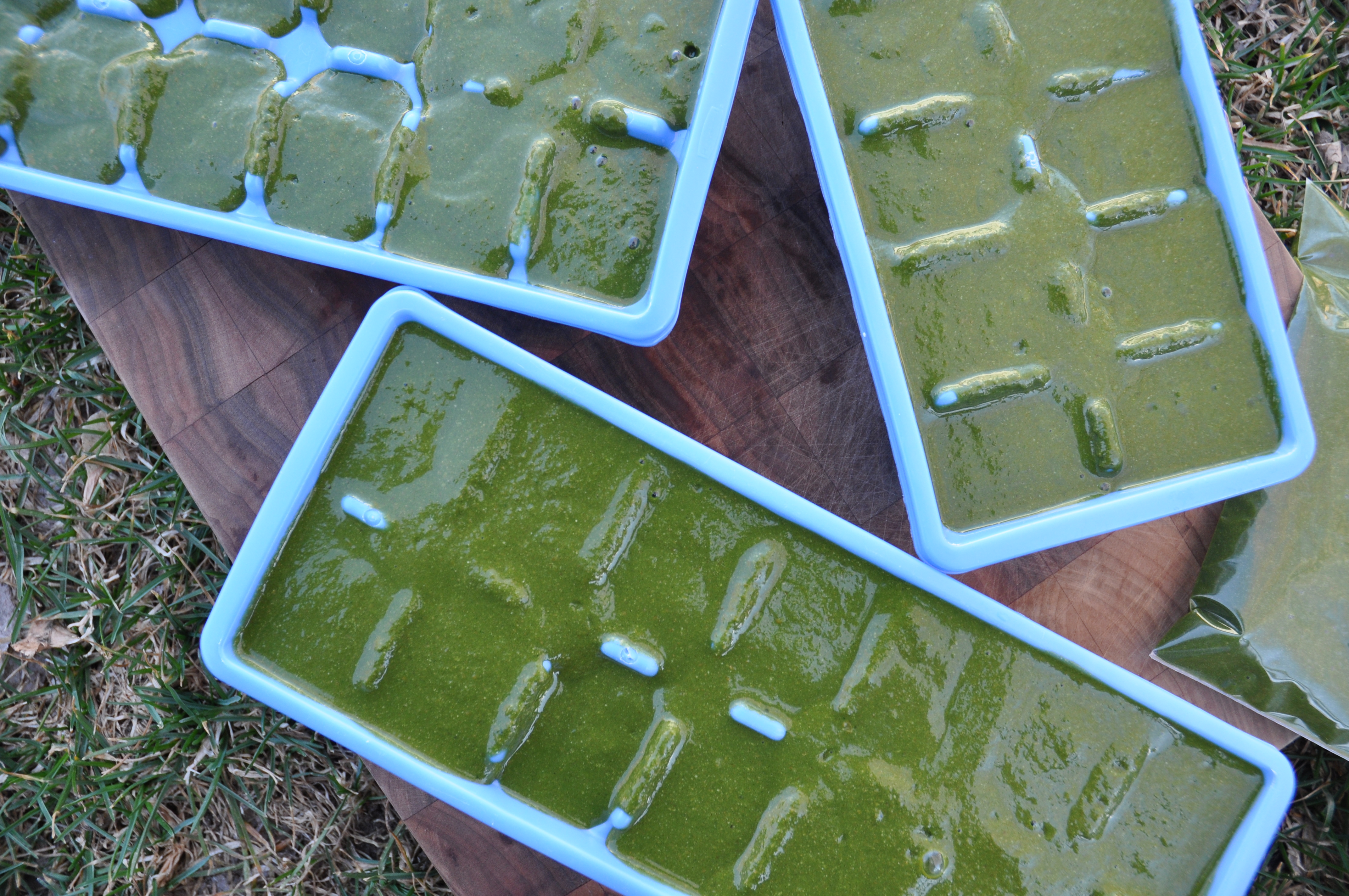 kale cube trays