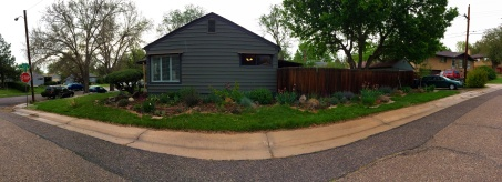 A pano of the side garden.