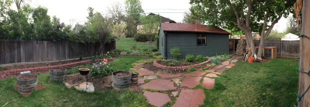 A pano of the backyard.