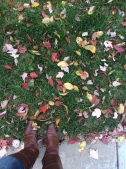 me and my fall boots in the leaves