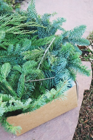 pine cuttings in a box for a wreath