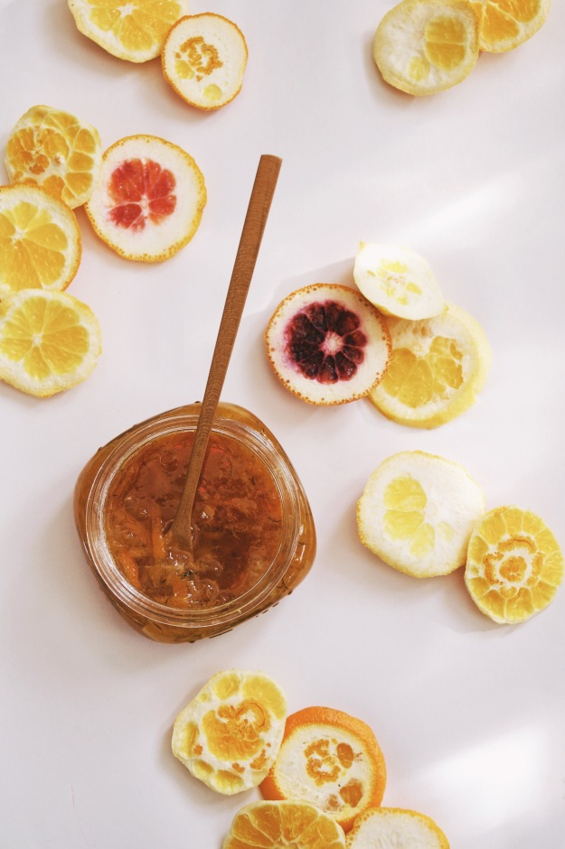 marmalade with slices of citrus