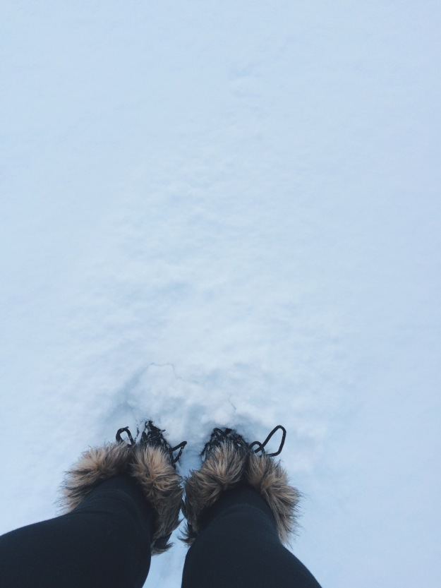 snowy walk...and my sorrels
