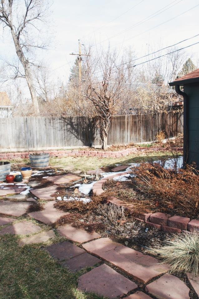 backyard garden   holly & flroa