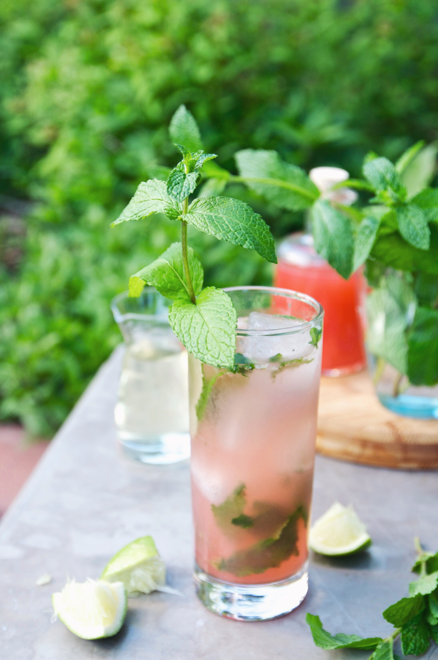 strawberry rhubarb shrub mojito | holly & flora