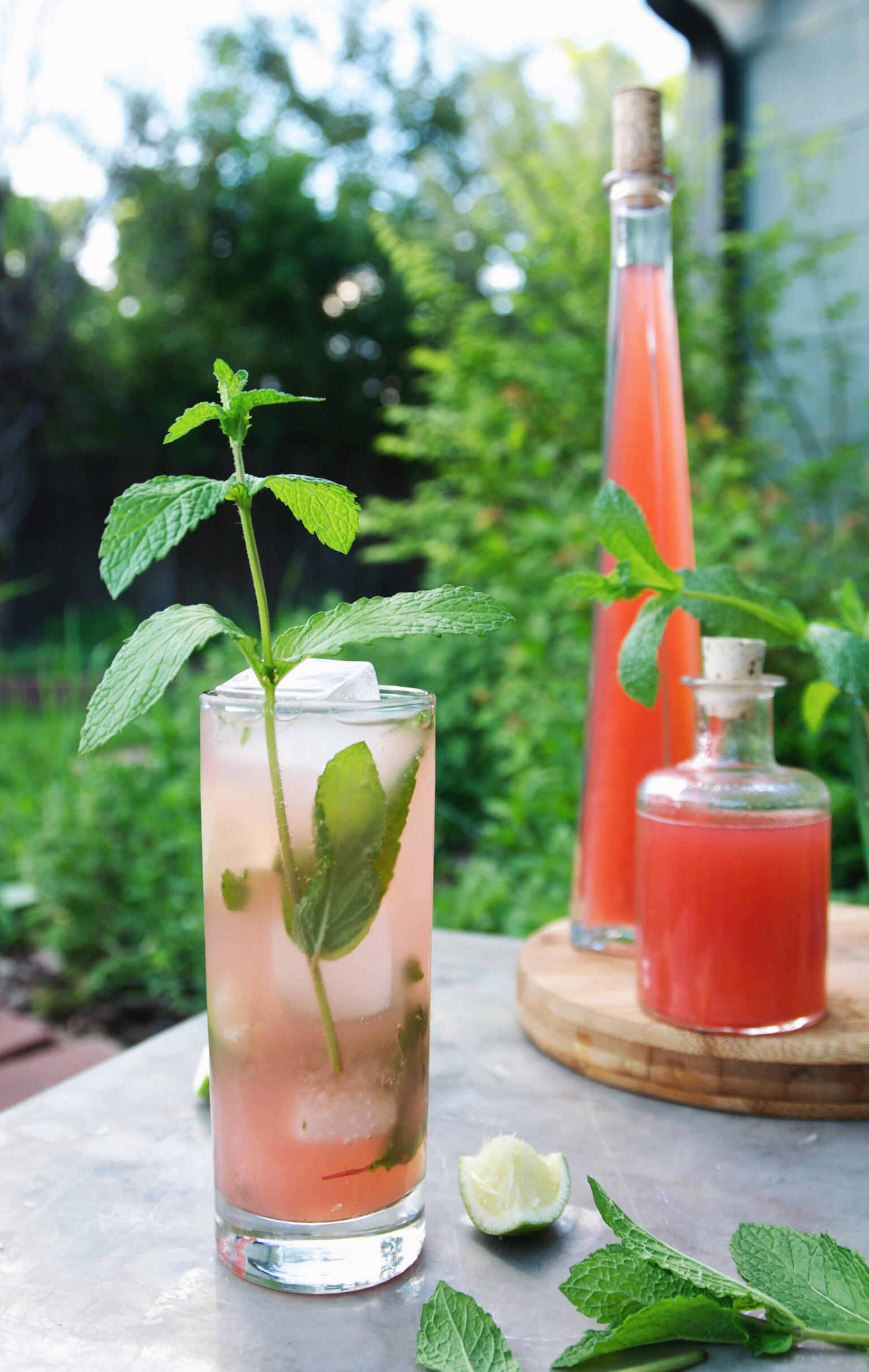 strawberry rhubarb shrub mojito | holly & flora