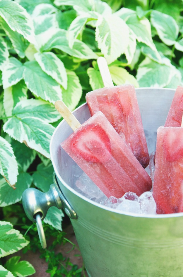 strawberry + watermelon rosé popsicles | holly & flora