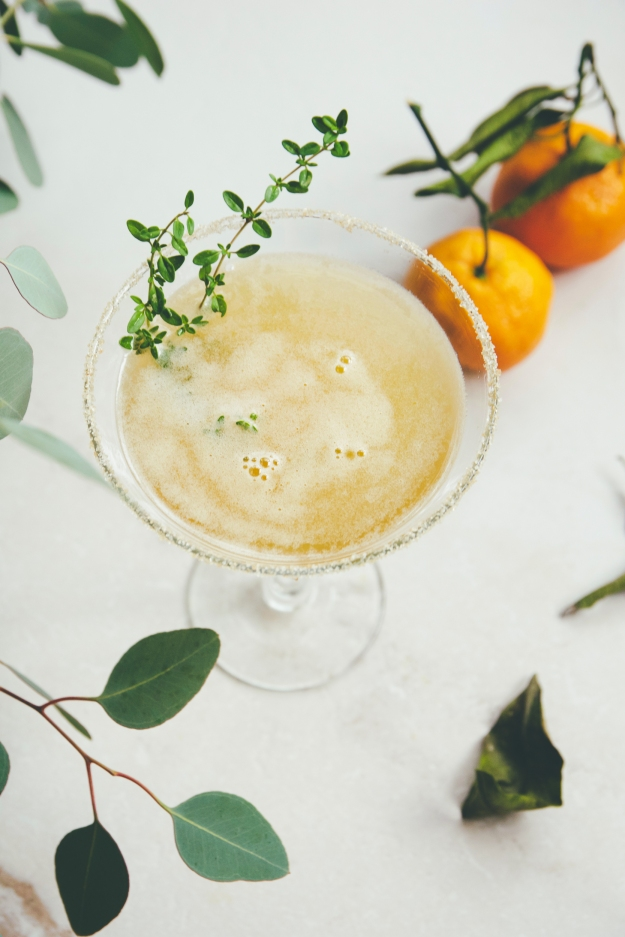 sidecar cocktails: variation on a theme 02 | holly & flora