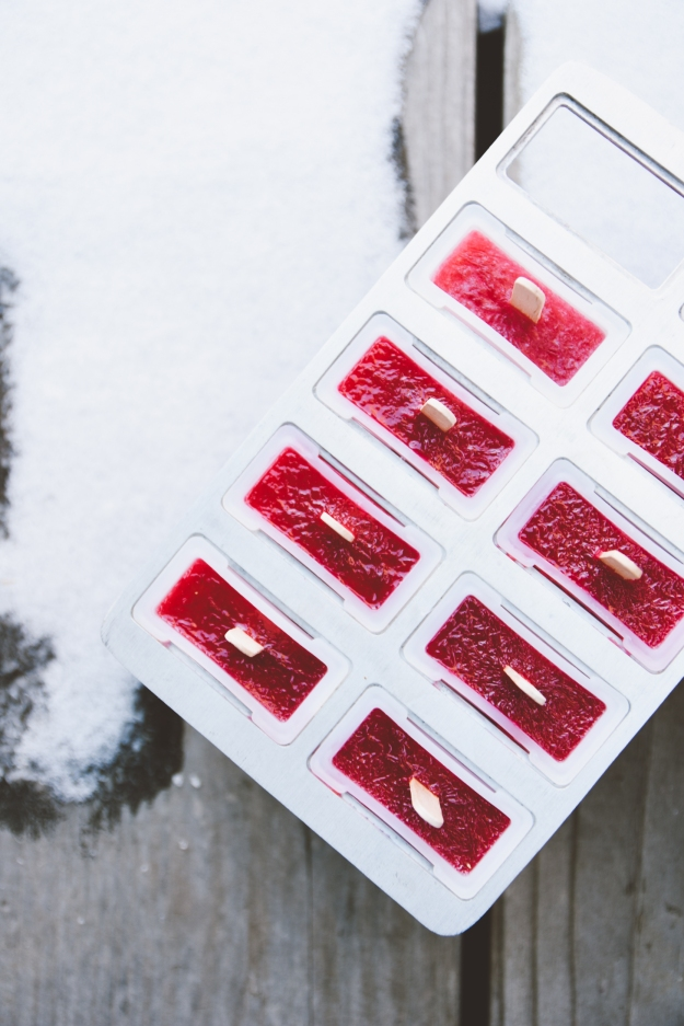 blood orange, aperol + gin popsicles | holly & flora
