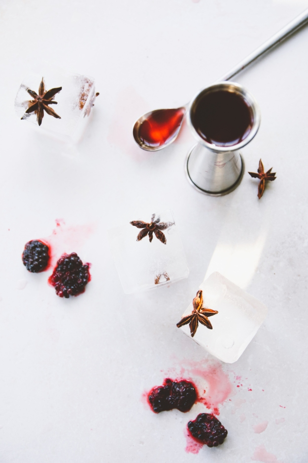 crushed blackberry negronis | holly & flora