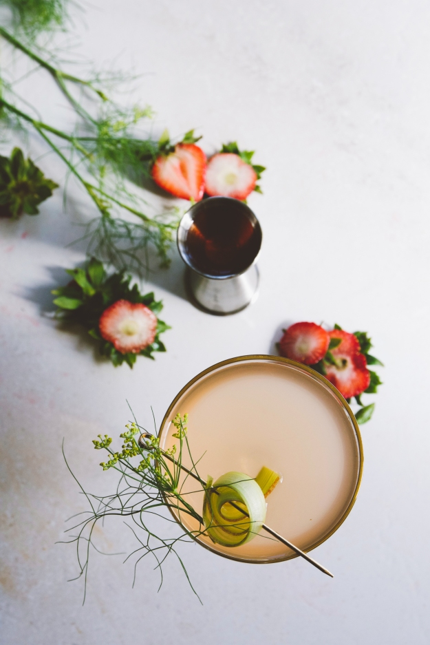 summer vespers with strawberry, rhubarb & fennel | holly & flora