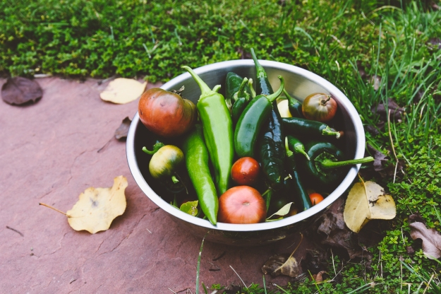 green garden bloody marys with tomatillos + late-season tomatoes | bittersweet seasons of change | holly & flora